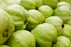 Green guava Royalty Free Stock Photography
