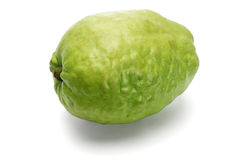 Green guava fruit Stock Photo