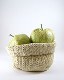 Green guava fruit  in a sack Royalty Free Stock Photo