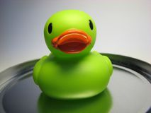 Green gum duck 15. Green gum duck on the metallic salver. Duck to play in the bath stock images