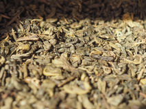 Green gunpowder tea Stock Photography