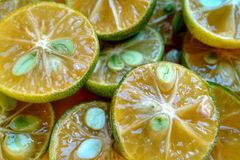 Green halved lemon fruits Royalty Free Stock Photography