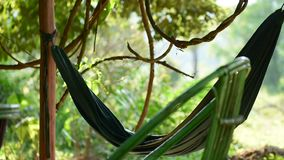 Green hammock flutters in the wind with the jungle in the background. During daytime. Koh Rong Samloem island, Cambodia stock video footage