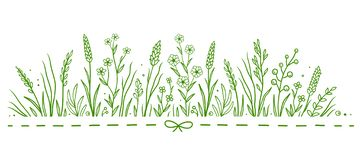 Green art pattern with herbs and flowers stock photography