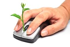 Green it. Hand holding a tree growing on a mouse / green it royalty free stock photo