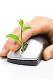 Green it. Hand holding a tree growing on a mouse / green it royalty free stock photography