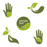 Green hands Stock Image