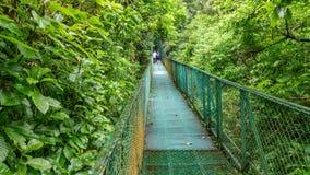 Green hanging bridge in Rainforest of Monteverde Royalty Free Stock Images