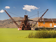 Green harbor. Puno. Peru Stock Photo