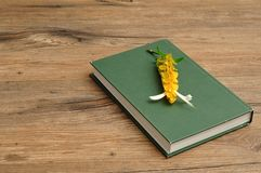 A green hardcover story book with yellow flowers. On a wooden background Royalty Free Stock Photos