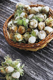 Green hazelnuts in a basket. On wooden background Royalty Free Stock Photography
