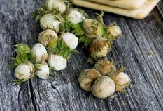 Green hazelnuts closeup Stock Photos