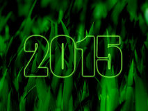 Green 2015 hd. New Year 2015 HD wallpaper Royalty Free Stock Photography
