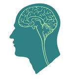 Green head and brain Royalty Free Stock Images