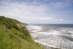 Green headland in summer seascape Royalty Free Stock Images
