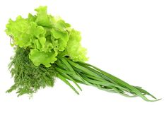 Green Healthy Backgound Stock Images