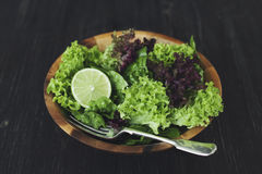 Green healthy lettuce salad with lime. Stock Photo