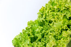 Green healthy salad Royalty Free Stock Images