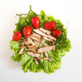 Green healthy salad Stock Images
