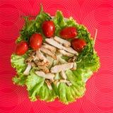 Green healthy salad Royalty Free Stock Image