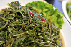 Green healthy seaweed dish Royalty Free Stock Images
