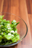 Green and healthy spring dish Royalty Free Stock Photos