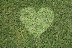Green heart Stock Image