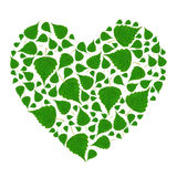 Green Heart Royalty Free Stock Image