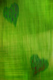 Green heart. Abstract texture of two green hearts on a bright green background stock photography