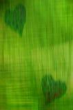 Green heart stock photography
