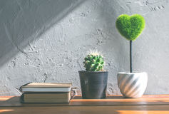 green heart, book cactus flower on wood table, love and valentin Royalty Free Stock Photos