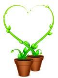 Green Heart Frame Stock Photo