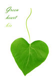 Green heart from leaf - bio Royalty Free Stock Image