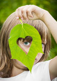 Green heart in a leaf Royalty Free Stock Photography