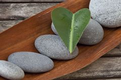Green Heart Leaf On Pebble stock photos