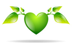 Green heart with leaves isolated Stock Images