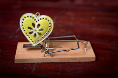 Green heart and mouse trap Stock Image