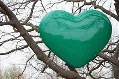 Green heart on a tree Royalty Free Stock Photos