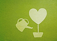 Green heart tree. Watering a green heart tree Royalty Free Stock Photos