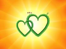 Green hearts Royalty Free Stock Photography