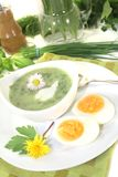 Green herb soup with eggs Stock Images