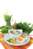 Green herb soup with eggs and a dollop of cream Stock Images