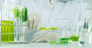 Free Green Herbal Medicine Research Discovery Vaccine At Science Lab Royalty Free Stock Photo - 113074345