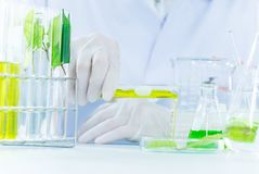 Free Green Herbal Medicine Research Discovery Vaccine At Science Lab Royalty Free Stock Photos - 113074458