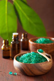 Green herbal salt and essential oils for healthy spa bath Stock Photos