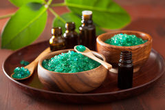 Green herbal salt and essential oils for healthy spa bath Stock Images