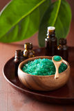 Green herbal salt and essential oils for healthy spa bath Royalty Free Stock Image