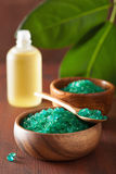 Green herbal salt and essential oils for healthy spa bath Royalty Free Stock Photography