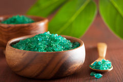 Green herbal salt for healthy spa bath Stock Images