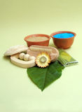 Green herbal spa still life royalty free stock image